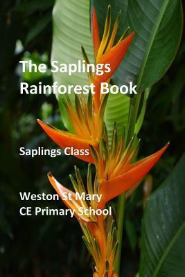 The Saplings Rainforest Book