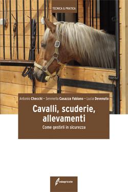 Cavalli, scuderie, allevamenti