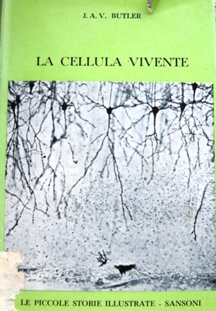 La cellula vivente