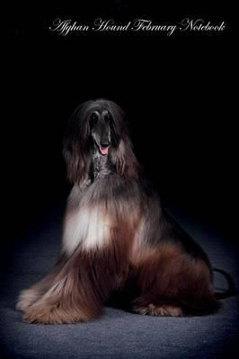 Afghan Hound February Notebook Afghan Hound Record, Log, Diary, Special Memories, to Do List, Academic Notepad, Scrapbook & More