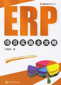 ERP项目实施全攻略