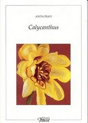 Calycanthus