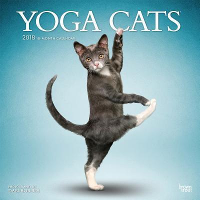Yoga Cats 2018 Calendar