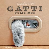Calendario gatti 201...