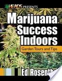 Marijuana Success In...