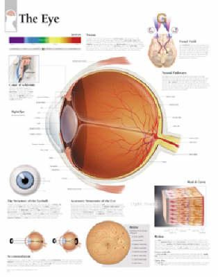 The Eye, Paper Chart