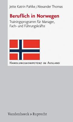Beruflich in Norwegen