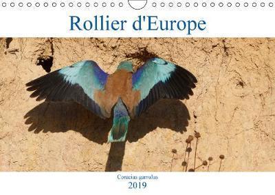 Rollier d'Europe (Co...
