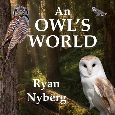 An Owl's World