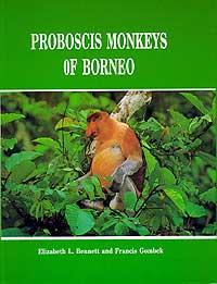 Proboscis Monkeys of Borneo