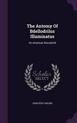 The Antomy of Bdellodrilus Illuminatus