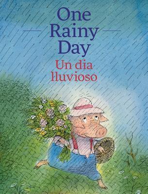One Rainy Day / Un día lluvioso