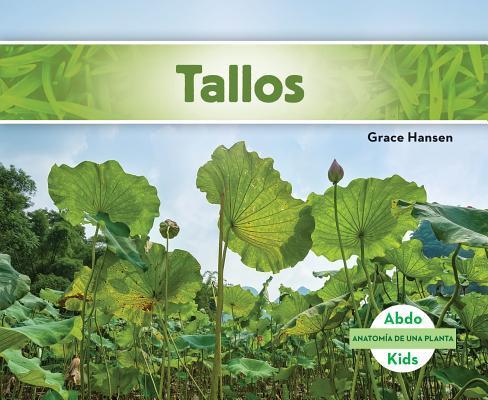 Tallos / Stems