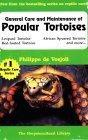 General Care and Maintenance of Popular Tortoises