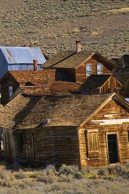 Prairie Town Journal