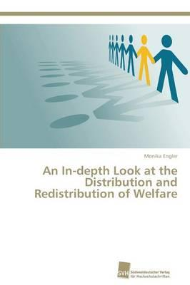 An In-depth Look at the Distribution and Redistribution of Welfare