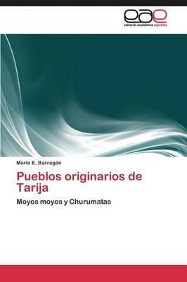 Pueblos originarios de Tarija