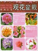观叶盆栽/实用养花