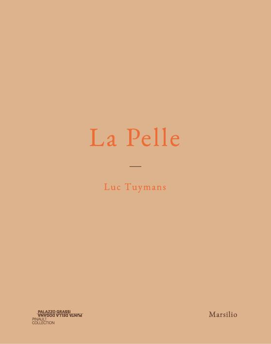 La Pelle - Luc Tuymans