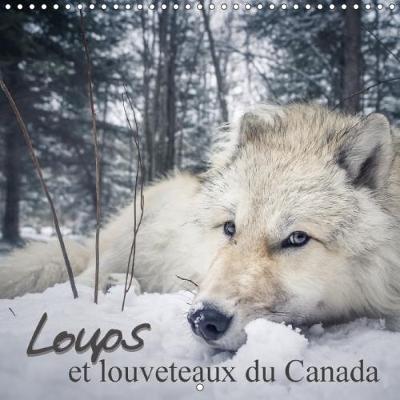Loups et Louveteaux du Canada Calendrier Mural 2018 300 300