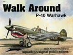 P-40 Warhawk - Walk Around No. 8