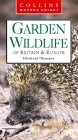 Garden Wildlife of Britain & Europe