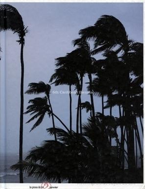Caribbean Biennial