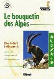 Le bouquetin des Alpes