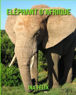 Eléphant D'afriqu...