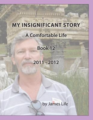 My Insignificant Story