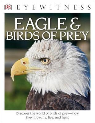 Eagles & Birds of Prey