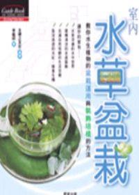 室內水草盆栽