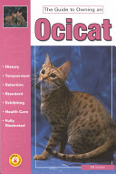 The Guide to Owning an Ocicat