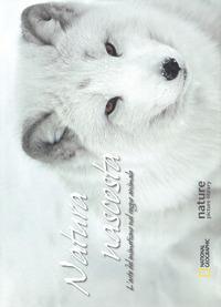 Natura nascosta. L'arte del mimetismo nel regno animale. Ediz. illustrata