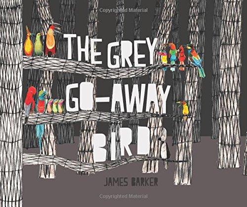 The Grey Go-Away Bird
