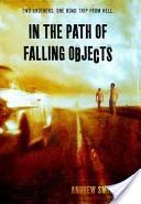 In the Path of Falli...