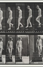 Enciclopedia delle arti contemporanee