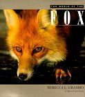 The World of the Fox