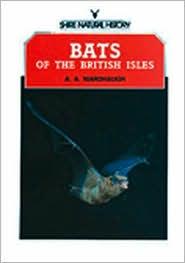Bats of the British Isles