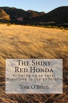 The Shiny Red Honda