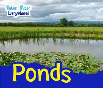 Ponds (Water, Water Everywhere!)