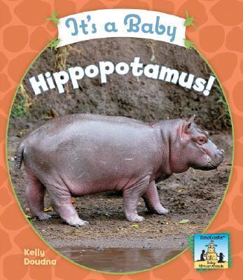 It's a Baby Hippopot...