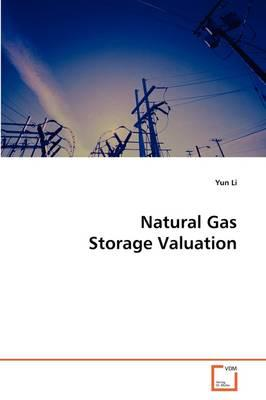 Natural Gas Storage Valuation