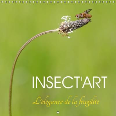 Insect'art