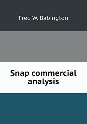 Snap Commercial Analysis