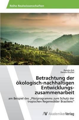 Betrachtung der  ökologisch-nachhaltigen  Entwicklungszusammenarbeit