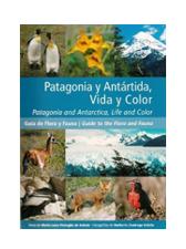 Patagonia y Antartida, vida y color