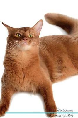 Somali Cat Affirmations Workbook Somali Cat Presents