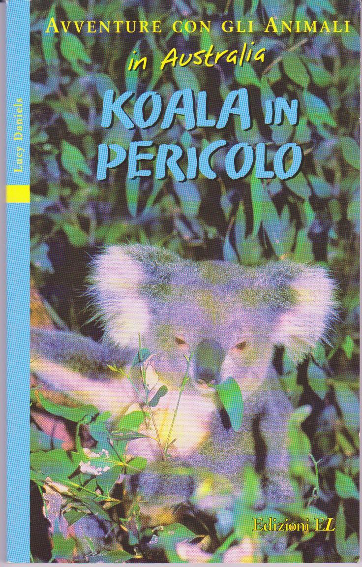 Koala in pericolo