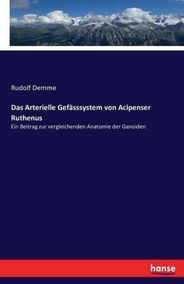 Das Arterielle Gefasssystem Von Acipenser Ruthenus